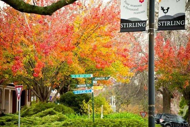 Stirling mian street